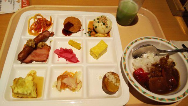 9種のおかずが入った角皿とカレー皿